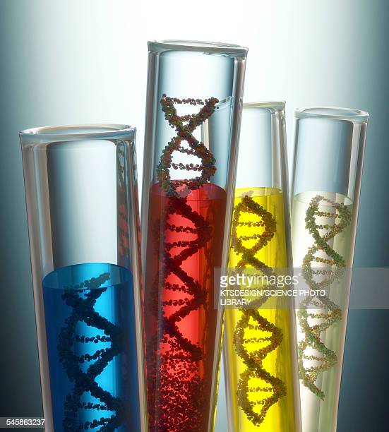 test tubes containing dna, illustration - genetic modification stock illustrations, clip art, cartoons, & icons