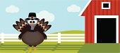 Thanksgiving Turkey on the Farm