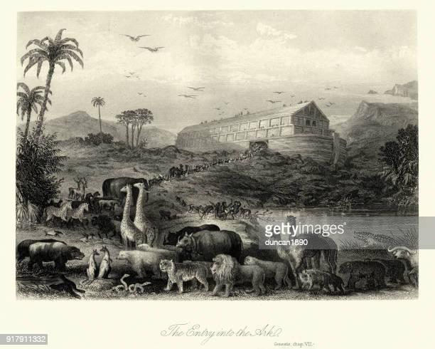 The Animals entering Noah's Ark, Genesis