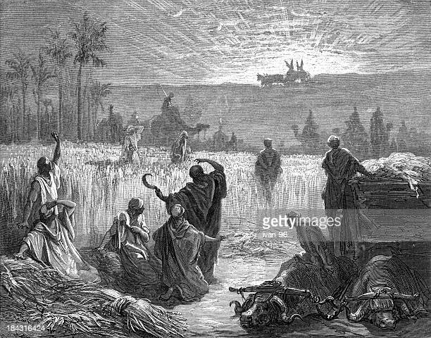 the ark is returned - biblical event stock illustrations