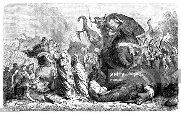 the battle of asculum - epirus greece stock illustrations