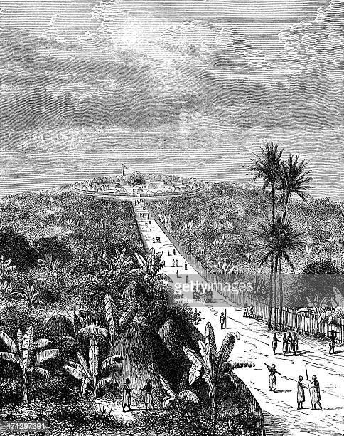 the capital of king m'tesa, buganda (in uganda) 1882 engraving - grass hut stock illustrations