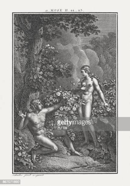 illustrazioni stock, clip art, cartoni animati e icone di tendenza di the creation of eve (genesis 2), incisione su rame, pubblicata nel 1850 circa - adamo e eva