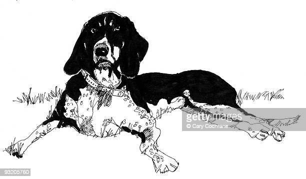 the dog - pen and ink stock illustrations