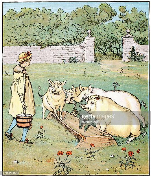 the farmer's boy - pigs trough stock illustrations