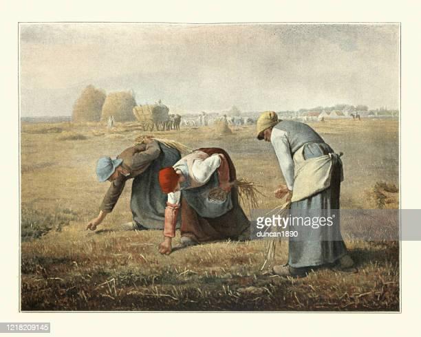 the gleaners von jean-francois millet, bäuerinnen, die bauernaufdem ersinnen - gemälde stock-grafiken, -clipart, -cartoons und -symbole