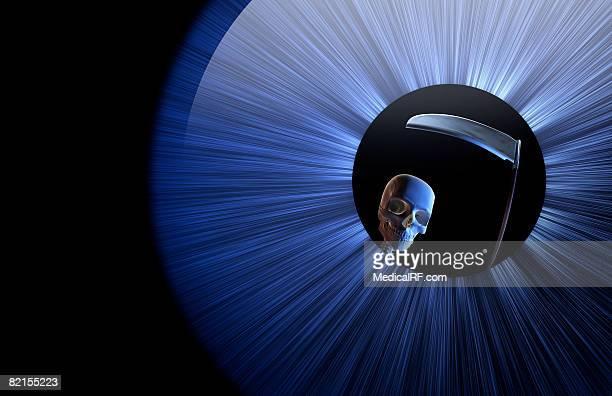 ilustraciones, imágenes clip art, dibujos animados e iconos de stock de the grim reaper - la muerte