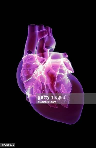 the heart - glowing stock illustrations, clip art, cartoons, & icons