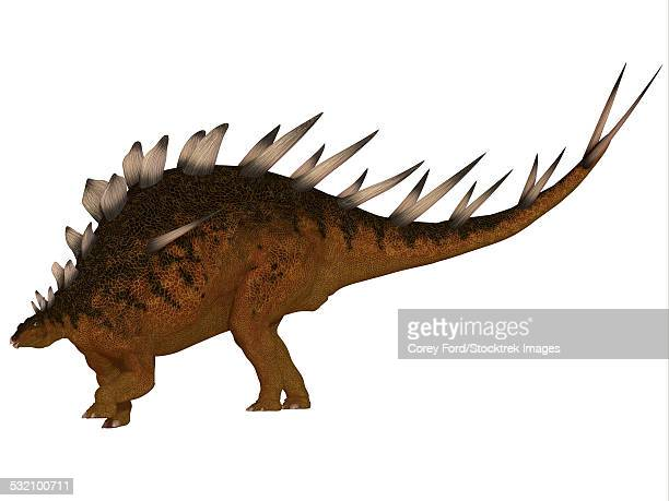 the kentrosaurus dinosaur from the jurassic period of north america has plates along its spine and spikes on its shoulders and tail. - scute stock illustrations, clip art, cartoons, & icons