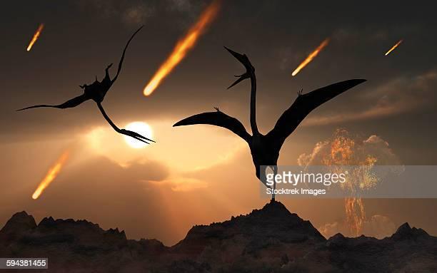 The last days of Quetzalcoatlus during the Cretaceous Period.
