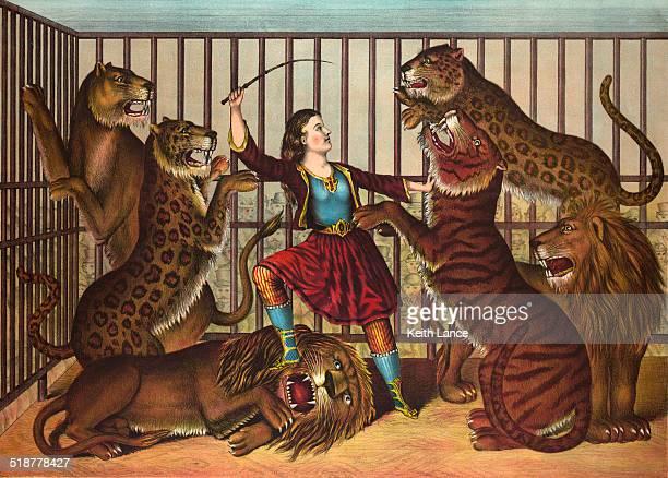 The Lion cama Queen