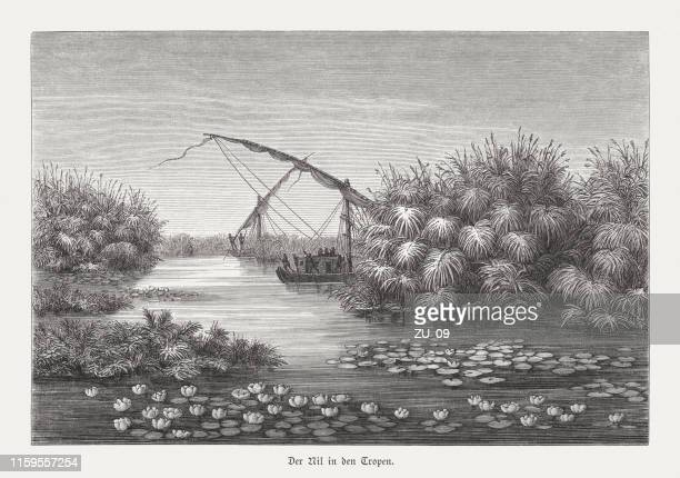 the nile river in the tropics, wood engraving, published 1879 - nile river stock illustrations, clip art, cartoons, & icons