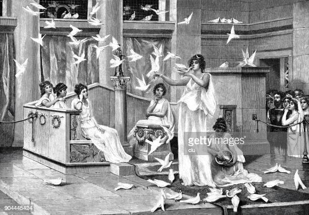 the pigeons of the temple of venus - venus roman goddess stock illustrations, clip art, cartoons, & icons