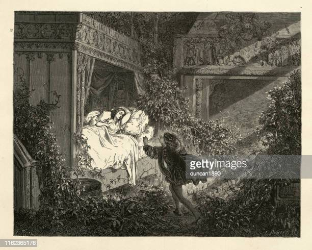 the prince discovering sleeping beauty, perrault's fairy tales - princess stock illustrations