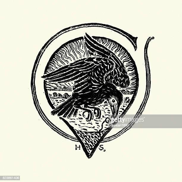 the raven - crow bird stock illustrations