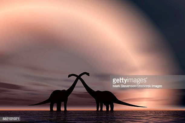 the silhouetted forms of a pair of courting sauropod dinosaurs. - jurassic stock illustrations, clip art, cartoons, & icons