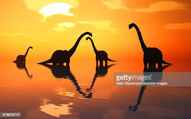 The silhouetted shapes of sauropod dinosaurs at the start of a prehistoric day.