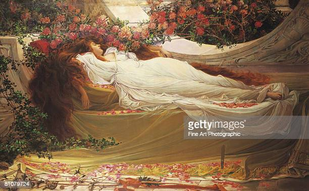 the sleeping beauty - one young woman only stock illustrations