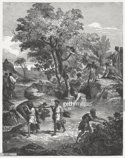 The Spies' Activities (Numbers 13, 23-24), wood engraving, published 1886