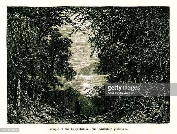 The Susquehanna River, USA, wood engraving (1872)