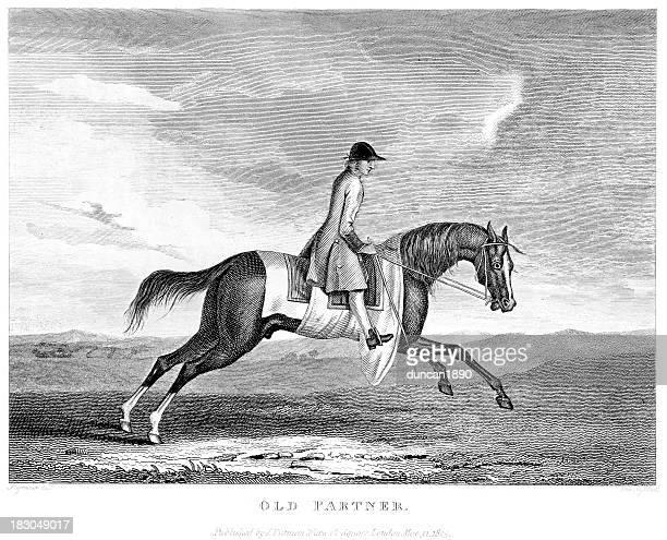 stockillustraties, clipart, cartoons en iconen met the thoroughbred racehorse sherwood - military
