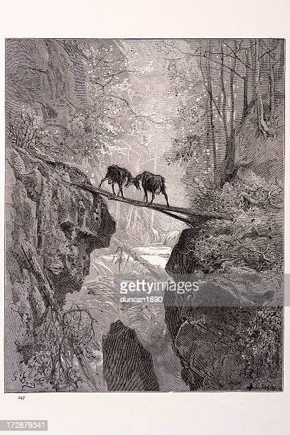 the two goats - two animals stock illustrations
