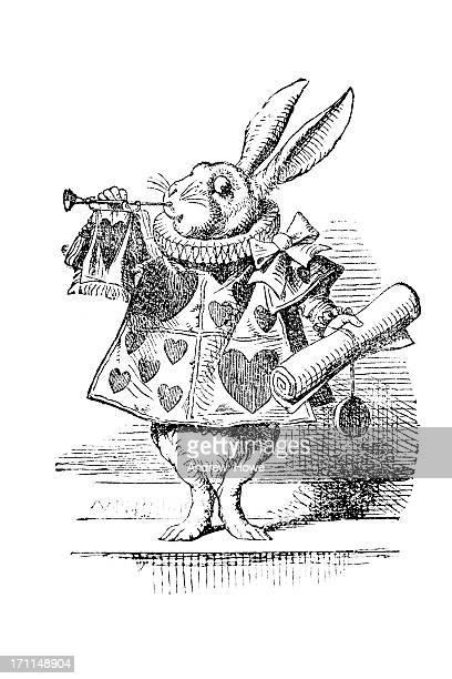 the white rabbit - engraving stock illustrations