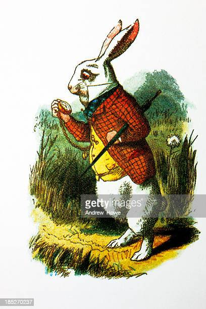 the white rabbit - easter bunny stock illustrations, clip art, cartoons, & icons