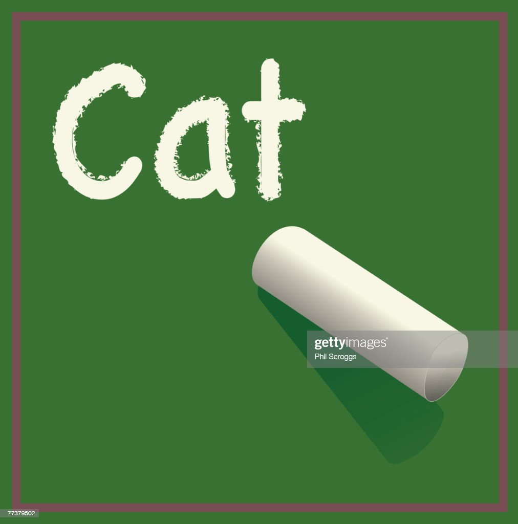 The word cat written on the chalkboard : Stock Illustration