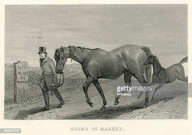 Going to market mare and foal 19th century engraving