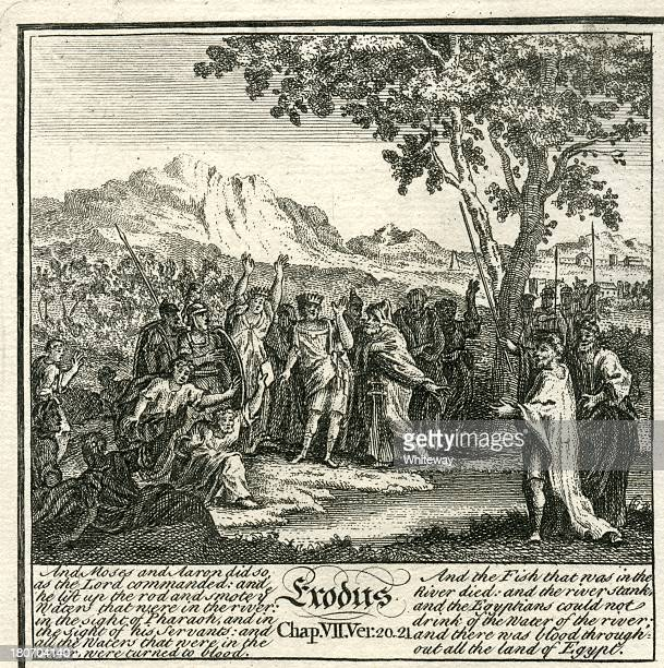 exodus plagues of egypt fishes die 18th century bible engraving - rotting stock illustrations, clip art, cartoons, & icons