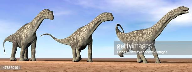 Three Argentinosaurus dinosaurs standing in the desert by daylight.