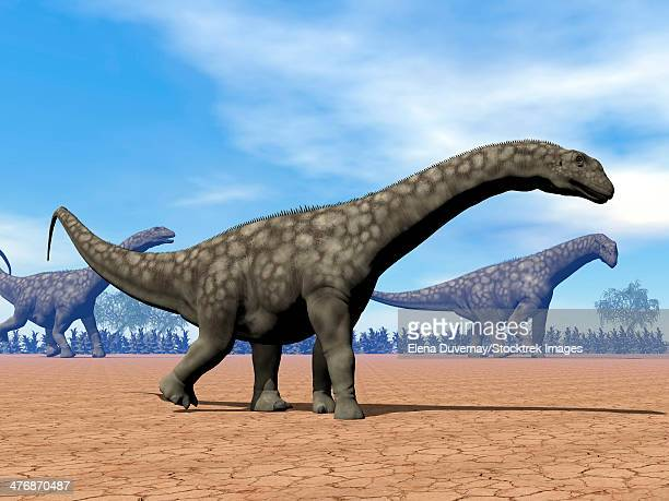 Three Argentinosaurus dinosaurs walking in the desert by day.