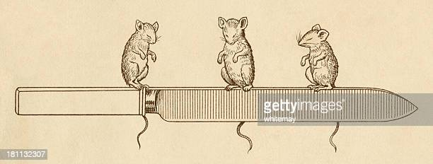 Three blind mice with a carving knife