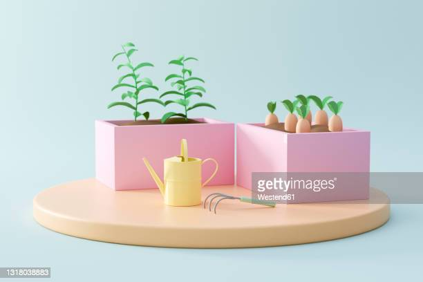three dimensional render of vegetables planted in raised beds - leisure activity stock illustrations