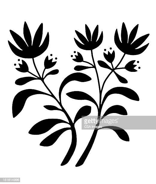 three flowers - illustration technique stock illustrations