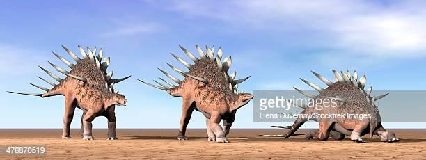 ilustraciones, imágenes clip art, dibujos animados e iconos de stock de three kentrosaurus dinosaurs standing in the desert by daylight. - paleozoología