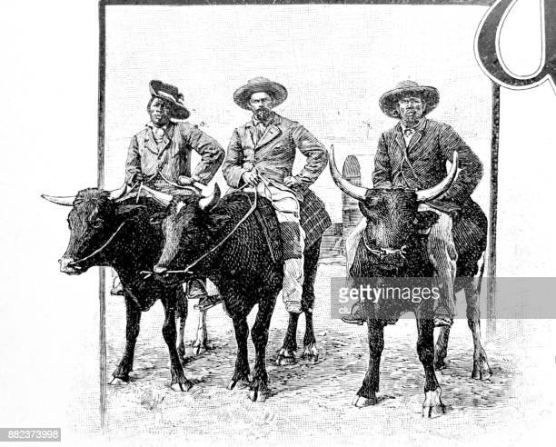 Three Men riding on oxen