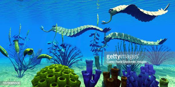 Three Opabinia regalis animals hunting for prey on a reef.