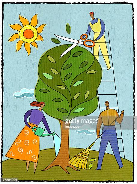 three people caring for a tree - landscaper professional stock illustrations, clip art, cartoons, & icons