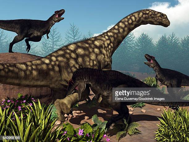 Three Tyrannotitans attacking an Argentinosaurus dinosaur.