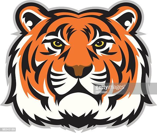 ilustraciones, imágenes clip art, dibujos animados e iconos de stock de tiger cara - tigre