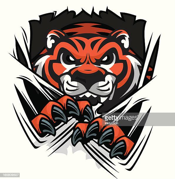 tiger tearing - claw stock illustrations, clip art, cartoons, & icons