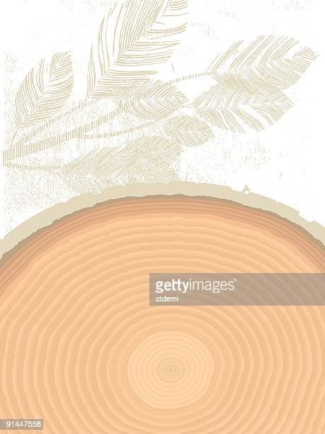 time - tree rings stock illustrations, clip art, cartoons, & icons