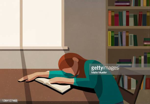 tired college student sleeping on book at sunny table in library - exhaustion stock illustrations