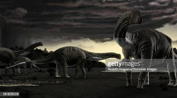 Titanosaurs in the first storm of the year.
