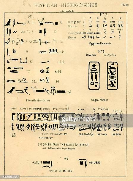illustrations, cliparts, dessins animés et icônes de hiéroglyphe interprété palaeography égyptien - hiéroglyphe