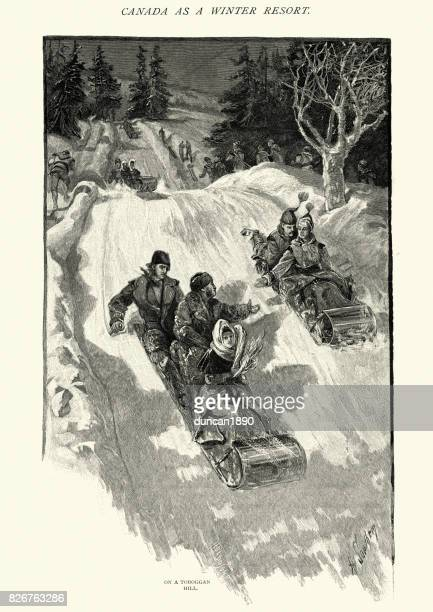 tobogganing, on a toboggan hill, canada, 19th century - tobogganing stock illustrations, clip art, cartoons, & icons