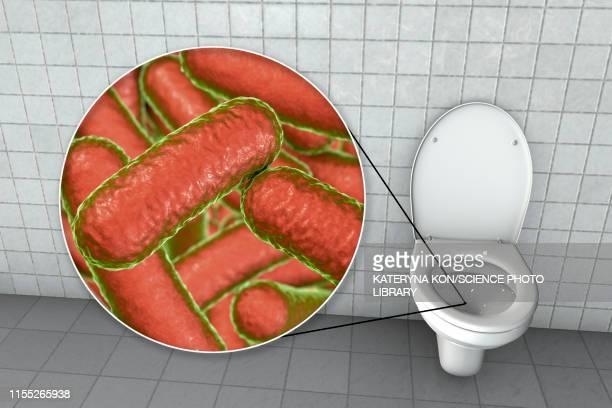 toilet microbes, conceptual illustration - salmonella bacteria stock illustrations