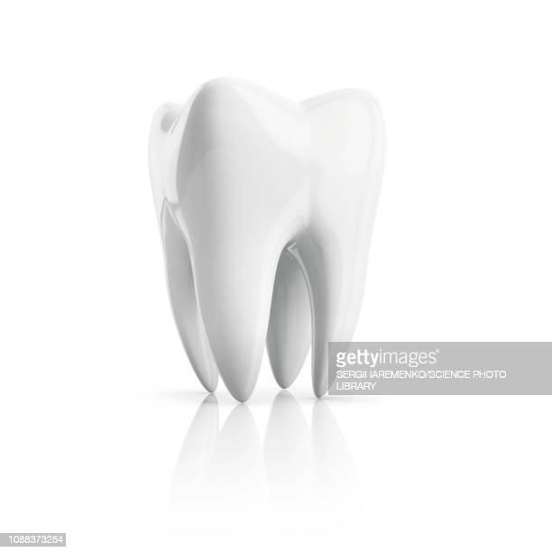 tooth, illustration - single object stock illustrations